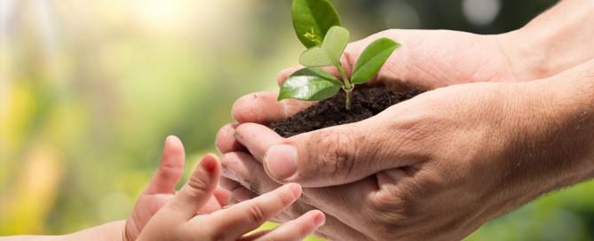 La importancia de dar