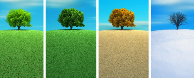 El ser humano ni se crea ni se destruye, sólo se transforma